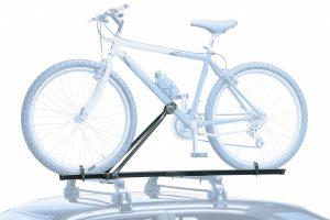 317 Bici
