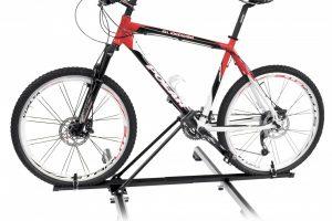 Top Bike_completo con bici copia